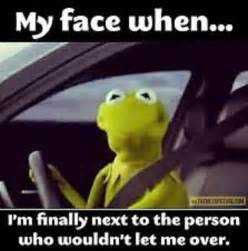 My Car Shocks Me When I Get Out 12 Hilarious Kermit The Frog Memes
