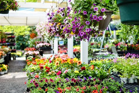 Earth Garden Center by Garden Center Earth Garden Center And Landscaping