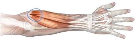 dolore braccio sinistro interno avambraccio on topsy one