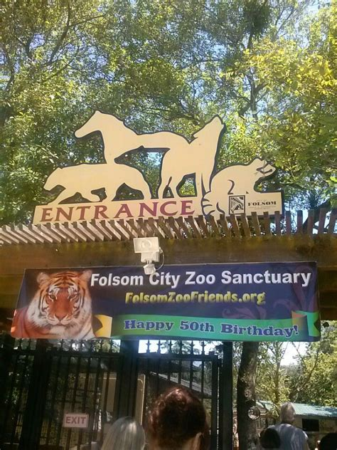 Pin By Bruce Chion Real Estate On Folsom Pinterest Folsom Zoo Lights