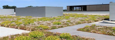 livi aprtments green roof liveroof hybrid green roofs