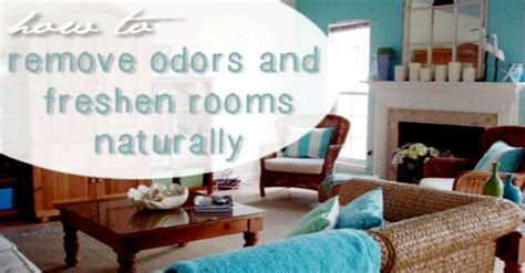 how to eliminate odors in a room how to remove odors and freshen rooms naturally