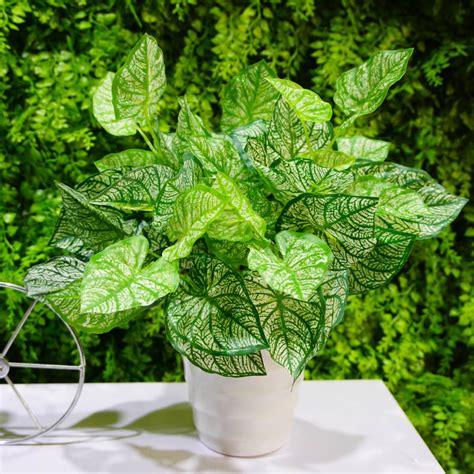 Bonsai Palsu Pohon Palsu Bunga Dekorasi Bunga Pajangan pot bunga plastik beli murah pot bunga plastik lots from china pot bunga plastik suppliers on