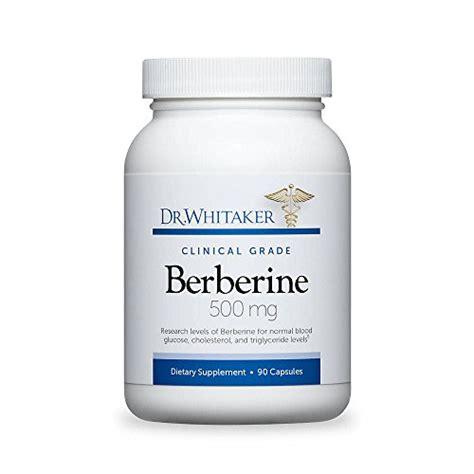 s 500 supplement reviews top 25 best berberine reviewed healthy4lifeonline