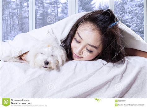 dogs sleeping in bedroom woman and her dog sleeping on bed stock photo image