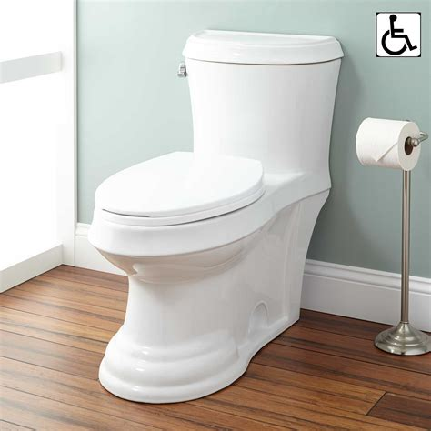 toilet seat commode skyla dual flush one elongated siphonic toilet
