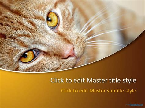 Free Animal Ppt Templates Wildlife Powerpoint Slide Designs Cat Powerpoint Template