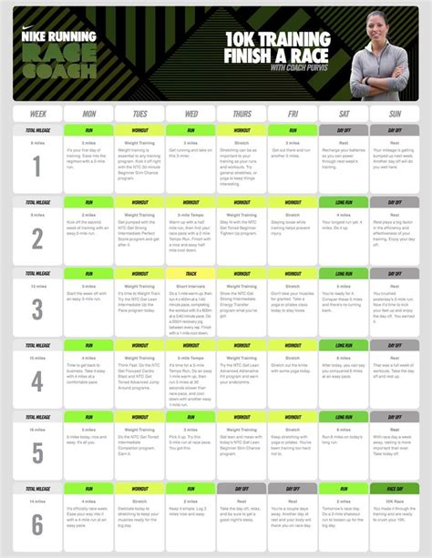 couch to 5k hal higdon 25 best ideas about 10k training plan on pinterest