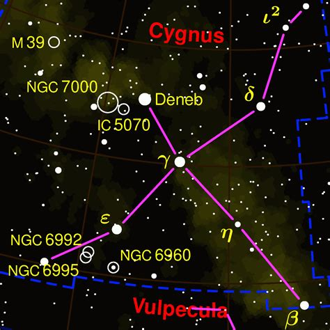 file cygnus constellation map inv png wikimedia commons