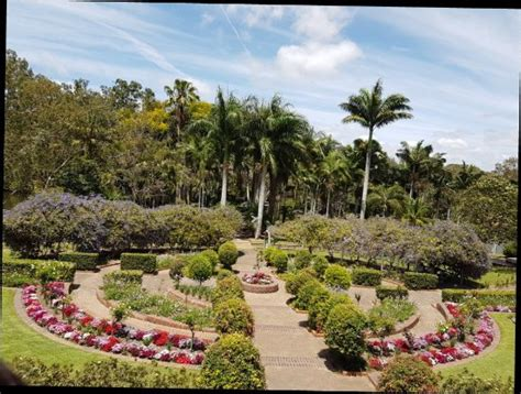 Bundaberg Botanical Gardens 20171012 114414 Large Jpg Picture Of Bundaberg Botanic