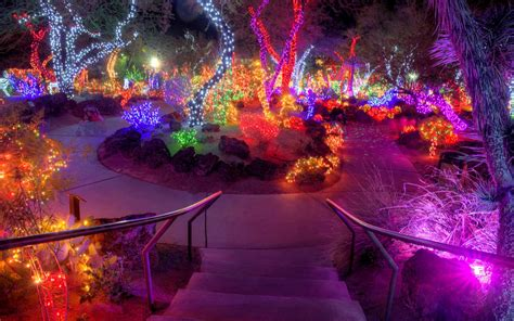 this nevada garden celebrates the holidays by wrapping