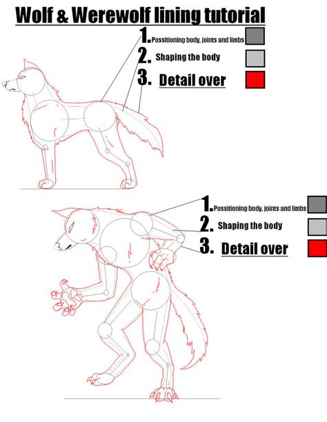 werewolf drawing tutorial wolf and werewolf tutorial by super sonic 101 on deviantart