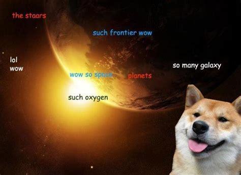 Shibe Meme - funny shibe memes runt of the web