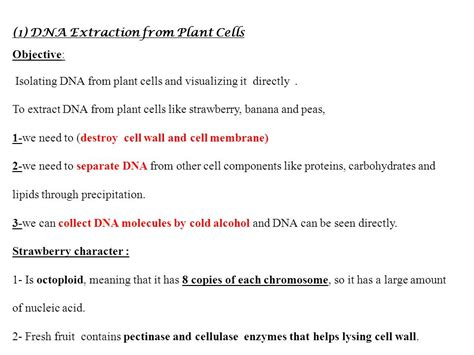 strawberry dna extraction lab by powerful points tpt