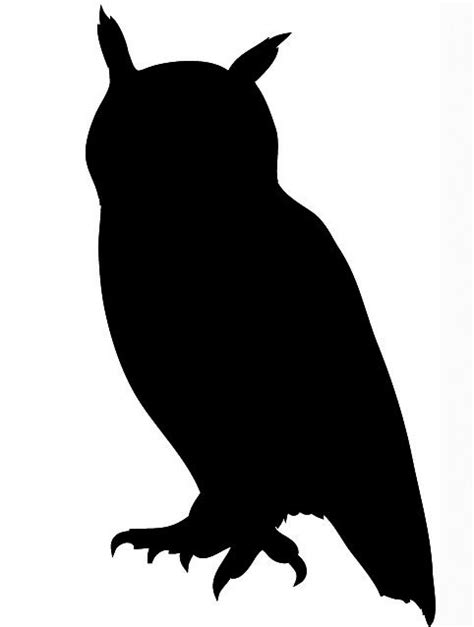 free silhouette images 25 unique owl silhouette ideas on pinterest silhouettes