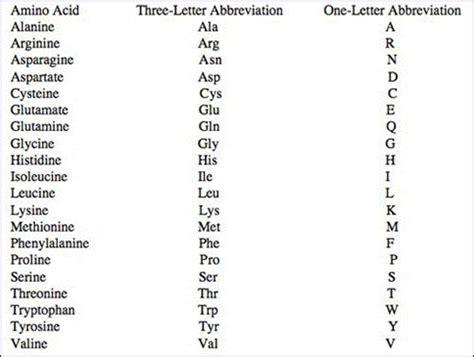 Amino Acid 1 Letter Code