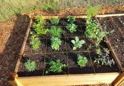 square foot gardening home garden information center