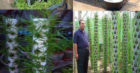 ide peluang bisnis  desa pertanian  menguntungkan
