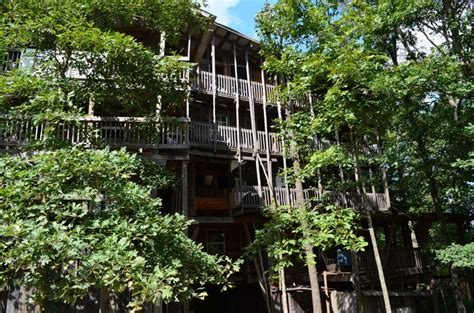 world s biggest tree house 1000 images about worlds largest treehouse on pinterest