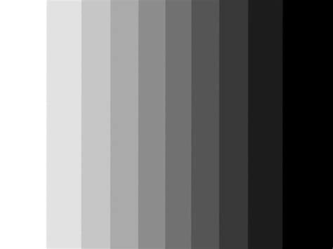 black and white to color black and white color scale www pixshark images