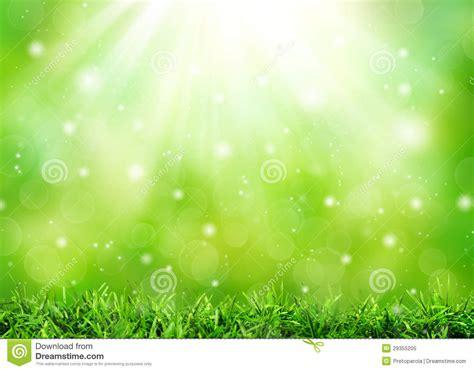 imagenes de naturaleza verdes fondo verde abstracto de la naturaleza foto de archivo
