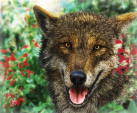 Smiling Wolf smiling wolf by sheltiewolf on deviantart