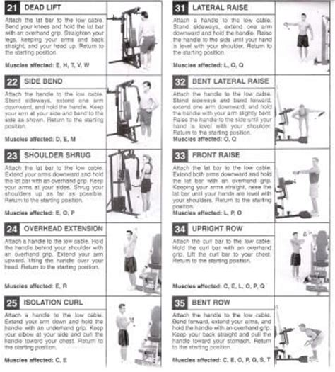 golds workout chart pdf eoua