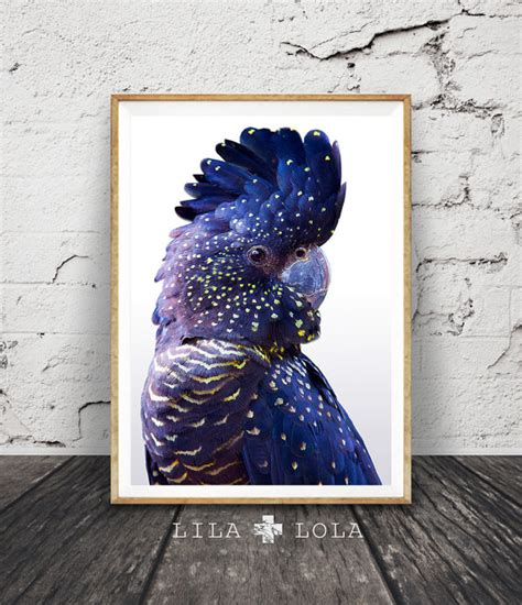 free printable bird wall art black cockatoo print bird wall art navy blue and by lilaxlola