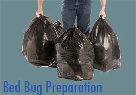 heat treatment for bed bugs preparation bed bug treatment options