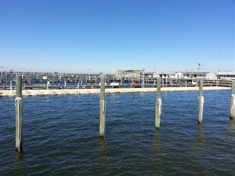 boat rentals lavallette nj ocean beach marina aqua rentz lavallette all you need