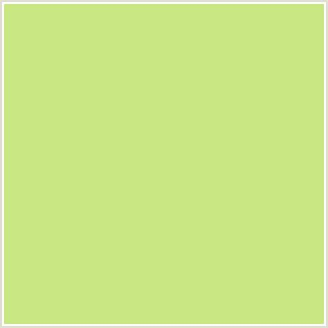 yellow green color c8e682 hex color rgb 200 230 130 green yellow