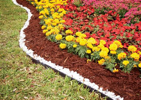 make your garden better with mulch garden club