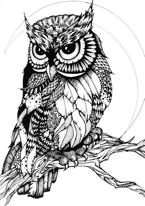 owl zentangle coloring page 1174 best images about 214 adult colouring owls birds