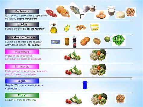 proteinas y minerales alimentaci 211 n alimento nutrici 211 n nutriente ppt