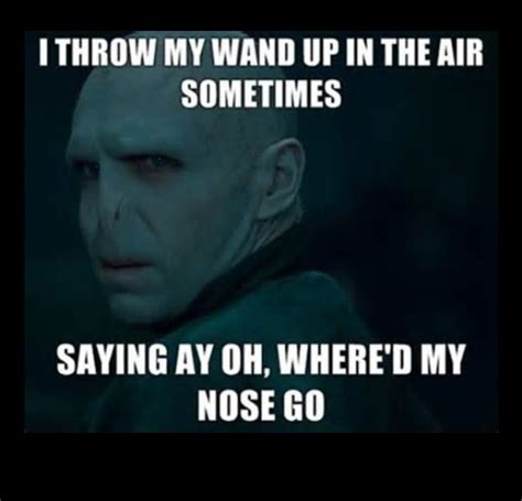 Voldemort Meme - funny voldemort meme by green llama whi
