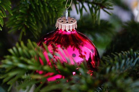 christmas tree flower lights christmas eve flower merry christmas and happy new year 2018