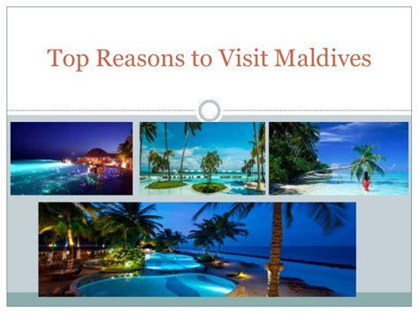 best time to visit maldives top reasons to visit maldives