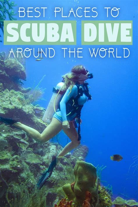 dive world best places to scuba dive around the world the abroad