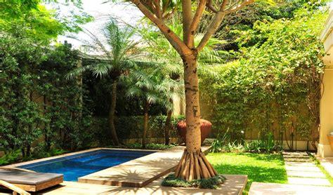 jardines casas de co jardines de casas con palmeras