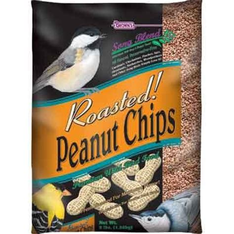 buy bulk songblend peanut chips bird seed 3 lb bag case