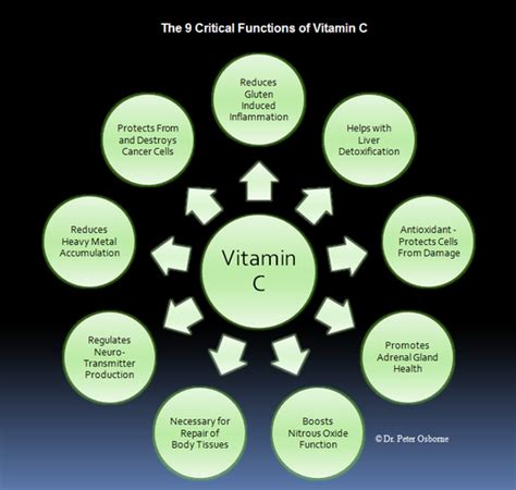 Gluten Inflammation Detox by Vitamin C The Vitamin That Regenerates And
