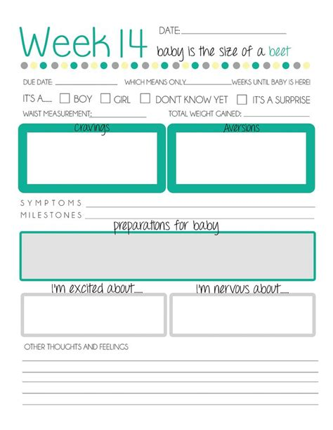 Pregnancy Journal Template free printable pregnancy journal stuff for