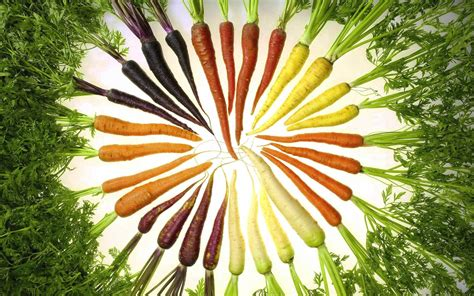 original color of carrots color carrot wallpapers and images wallpapers pictures