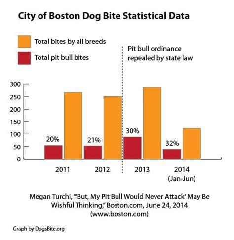 attack statistics pit bull attacks statistics quotes