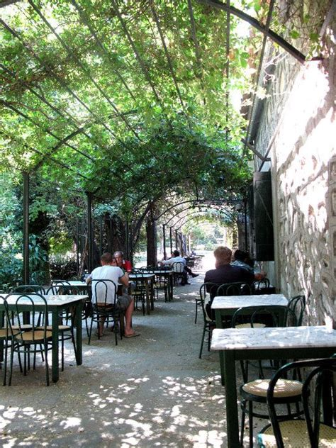 Garden Cafe by 25 Best Ideas About Garden Cafe On Greenhouse