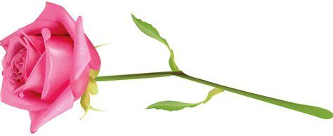 imagenes de hola rosas mis moldes y mas flores de papel