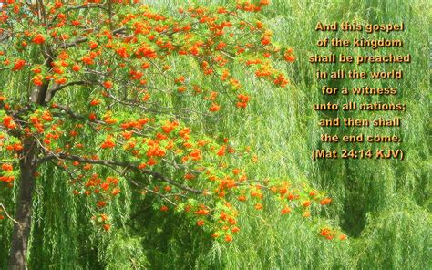 flower wallpaper large size large size bible versed scenic nature wallpapers