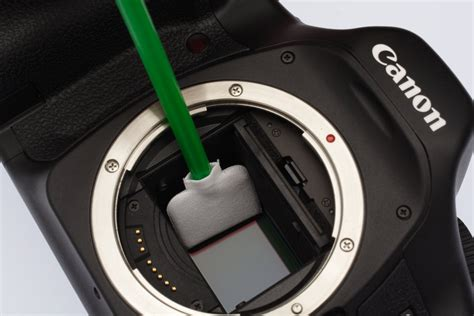 assistenza canon service sconto per pulizia sensore sprea fotografia news