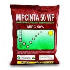 Insektisida Avidor 25 Wp 100 Gram tips merawat bibit tanaman agar selalu sehat dan cepat