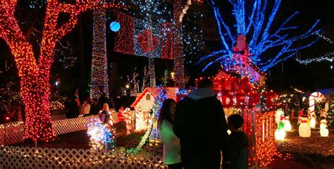 stanley park lights 3 million twinkling lights at bright nights in stanley park